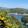 宇和島の風景
